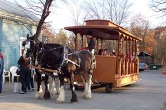 Christmas Preview - Saturday before Thanksgiving. Historic Kimmswick. Missouri