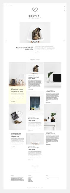 25 best WordPress Themes images on Pinterest | Wordpress template ...