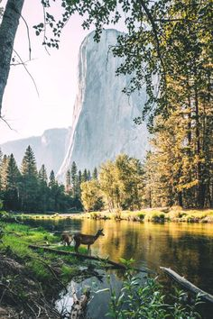 lsleofskye: Yosemite Valley | zeppaio