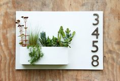 """20"""" x 30"""" White Hanging Planter & Metal Address Plaque, Succulent Wall Decor with (4) Brushed Aluminum Address Numbers (Free Shipping)"""