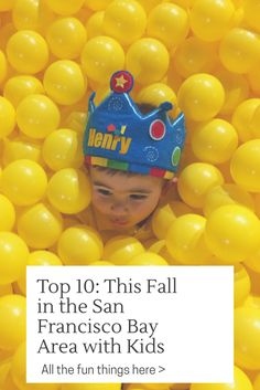 Top 10 things to do this fall with kids in the San Francisco Bay Area! Pop up museums, wineries, pumpkins and more!! Www.henryandandrewsguide.com