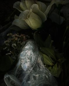Cemetary bins - Al Brydon Still Life Photography, Fine Art Photography, Artist, Contemporary, Artists, Artistic Photography, Art Photography