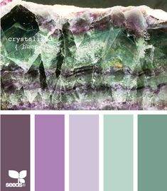 Green/purple color palette.
