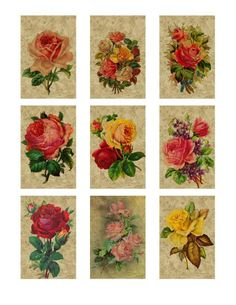 tags 001 victorian roses - Download - 4shared