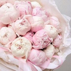 Wedding Fragrance Inspiration By Karen Gilbert Amazing Flowers, Dried Flowers, Fresh Flowers, Spring Flowers, Beautiful Flowers, Cut Flowers, Peonies Garden, Pink Peonies, Planting Flowers