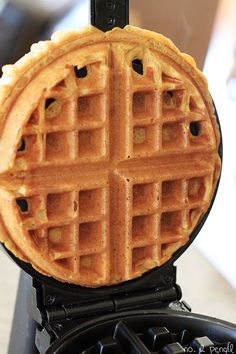 I'm pretty sure I could incorporate pumpkin into every one of my breakfast recipes from now until spring and be happy. This pumpkin waffle recipe is my new favorite. I adapted it from the Pumpkin Cinnamon Roll PancakesI shared last fall, and could not be more thrilled with the results. These pumpkin waffles are …