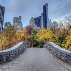 Entdeckt die Vielseitigkeit des Central Parks 🌿 #centralpark #newyorkcity #newyork #usa #wanderlust #fernweh #travelgram #viator…