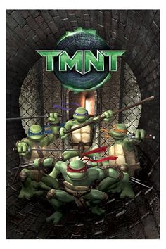 The 2007 TMNT movie was the movie that pretty much got me into the ninja turtles; it was the start of my love for TMNT.