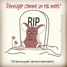 Expression française : S'ennuyer comme un rat… French Language Lessons, French Language Learning, French Lessons, French Expressions, French Nouns, French Classroom, French Teacher, French Quotes, One Liner