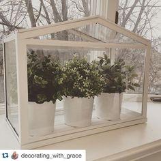 IKEA Socker - Indoor Miniature Greenhouse | Miniatures, Minis and Gardens