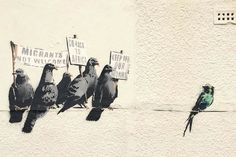 Banksy -- The work showed five grey pigeons holding up signs including one stating 'go back to Africa' towards a more colourful migratory swallow. Council removes Banksy artwork after complaints of racism. Banksy Graffiti, Street Art Banksy, Banksy Work, Bansky, Banksy Canvas, Banksy Prints, Graffiti Artwork, Pop Art, Urbane Kunst