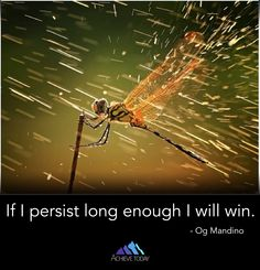Persistence can be tough sometimes but keep it in mind...as long as you don't quit, you'll eventually get to where you want to be. It may not happen today, or tomorrow, or this year, but having the belief that as long as you keep at it you'll win is a helpful ally in achieving your dreams. Just knowing that you have the power to win no matter what can help to brighten a cloudy day. #achievetodayliving #achievetoday #persistence