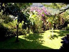 Mountain Lakeside Villa. Bedugul - Bali - http://bali-traveller.com/mountain-lakeside-villa-bedugul-bali/