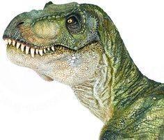 Papo Realistic Green Standing Tyrannosaurus Rex Dinosaur Toy Figure - Toys, Games, Collectibles, Dino