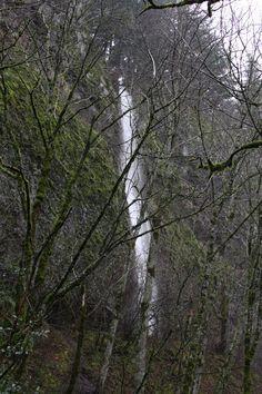 A seasonal falls near Multnomah Falls along old highway 30.  Columbia gorge, OR.  01/2011.