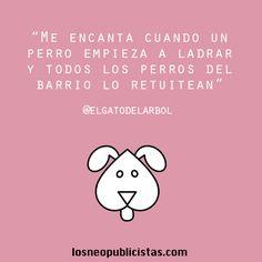 #Frases #Divertido #Humor