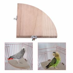 Us 365 15 Off Wooden Fan Shape Parrot Hamster Natural Wood Bird Cage Perch Stand Platform Small Animal Pet Budgie Toy In Bird Toys From Home Amp Budgie Toys, Parrot Toys, Bird Toys, Parrot Cages, Parrot Bird, Pet Bird Cage, Bird Perch, Conure Cage, Hamsters As Pets