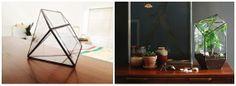 The Sculptural Terrarium - By Living Room Glass