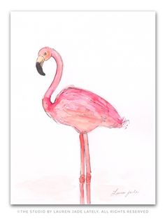 Flamingo No.Two