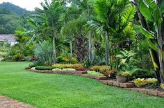 the tropical garden of the hotel cominsia lodge in kep cambodia