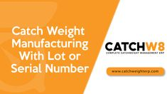 Catch Weight Manufacturing With Serial Number Weight Management, The Unit, Number