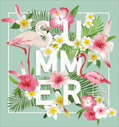 summer-560x600.jpg (560×600)