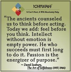 The ancients counseled us to think before acting. Today we add: feel before you think. Intellect without emotion is empty power. He who succeeds must first long to do it. Passion is the energizer of purpose. – David Seabury, The Art of Selfishness (1937,1964)