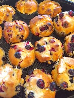Every Berry Muffin Recipe for Dummies (vegan)…plus the Bodacious Health Benefits of Berries