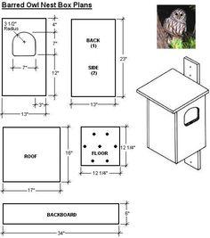 owl nest box plans Owl Nest Box, Owl Box, Garden Supplies, Garden Tools, Bird House Feeder, Bird Feeders, Easy Bird, Bird Houses Diy, Cat Houses
