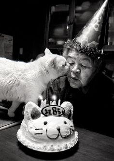 cat lady :)