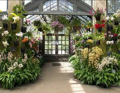 My home will have a greenhouse for growing orchids.