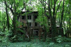 Photos : l'étrange île abandonnée de New York... | Planet