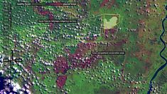In Kalimantan and Sumatra, fires consumed over 21,000sq. km of forest and farmland in 2015. Combining fieldwork with satellite image analysis, we established that drainage and 'monocropping' by agricultural corporations were direct causes, supporting calls for recognition of a new crime: ecocide.