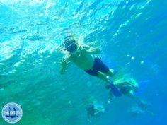 Snorkelling in Crete Greece: We offer a number of options for snorkelling on Crete: You could go by yourself for snorkelling, there are enough possibilities Best Hair Mask, Things To Come, Good Things, Crete Greece, Bed And Breakfast, Strand, Cool Hairstyles, Outdoor Decor, Crete Holiday