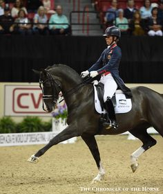 Valegro Gets A Good Start In Las Vegas | The Chronicle of the Horse