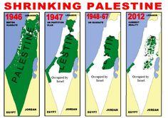 About Palestine  