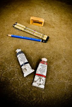 Describes types of art supplies used by  Living Charlotte Mason in California: Our Nature Journals Lately