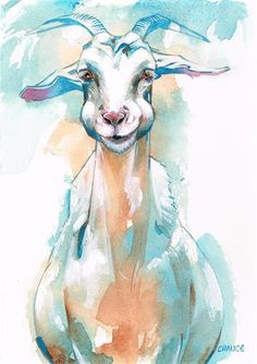 """Daily Paintworks - """"No. 13 Goat"""" - Original Fine Art for Sale - © Annabel Chance"""