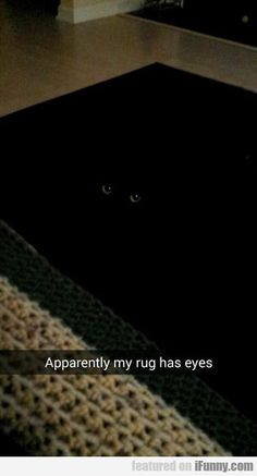 Apparently My Rug Has Eyes  #Funny-Pics http://www.flaproductions.net/funny-pics/apparently-my-rug-has-eyes/13824/?utm_source=PN&utm_medium=http%3A%2F%2Fwww.pinterest.com%2Falliefernandez3%2Fgreat%2F&utm_campaign=FlaProductions