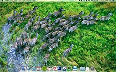 The first post of the  'Productivity Docks series - This one's mine and how I use my mac's dock