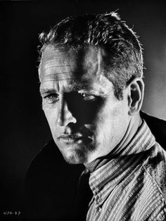 Paul Newman Portrait in Stripes Polo Photographie Hollywood Actor, Classic Hollywood, Old Hollywood, Actrices Blondes, Looks Black, Black And White, Faux Profil, Paul Newman Robert Redford, Paul Newman Joanne Woodward