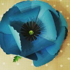 #fioridicarta