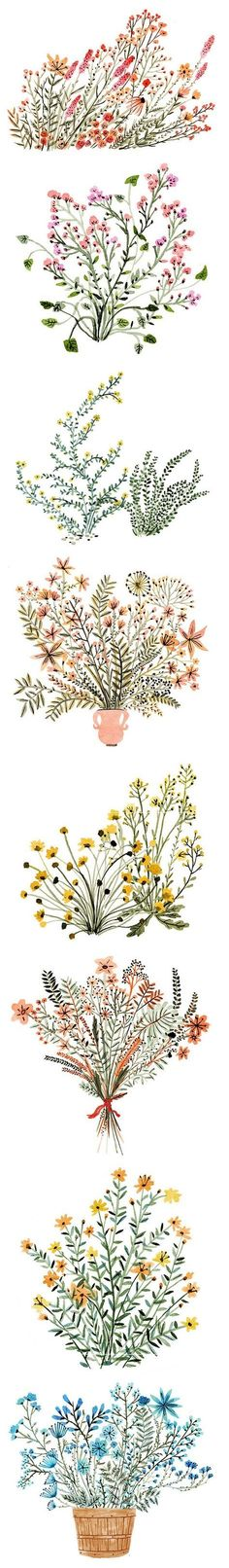 Dainty watercolor flowers, by Vikki Chu #art #journal