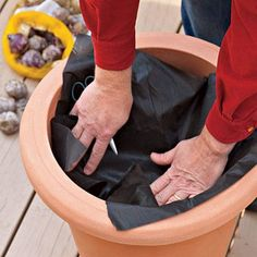 Container Gardening Ideas How to Plant Bulbs in a Container: Step Two - Planting bulbs in containers in the fall will give you a sunny show for spring. Garden Bulbs, Planting Bulbs, Planting Flowers, Fall Planting, Flowers Perennials, Potted Flowers, Rare Flowers, Bulb Flowers, Flower Gardening