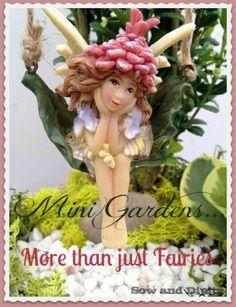 Mini Gardens, more than just fairies! Lot's of cool idea's in this post. Garden Pots, Balcony Gardening, Urban Gardening, Indoor Gardening, Organic Gardening, Gardening Photography, Garden Projects, Garden Ideas, Diy Projects