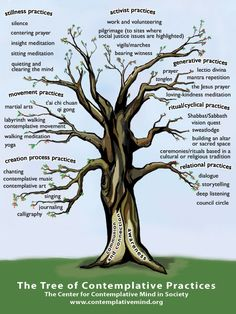 Image result for the tree of contemplative practices