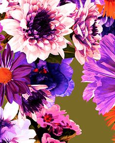 Kerrie Cauvin - Meandering Floral