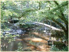 La vallee cousin le pont des gard parc naturel regional du morvan guide touristique de la bourgogne Site Classé, Cousin, Garden Bridge, Countryside, Guide, Outdoor Structures, Landscape, Burgundy, Gardens