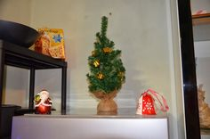 Our Special House: Christmas 2013 decorations