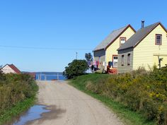 I recently revisited Big Tancook Island. For its size there were still new things to discover.  And, a visit here always leaves me planning my next. Read about my walk through a tiny, bare-bones island on Nova Scotia's South Shore by clicking on this pin.